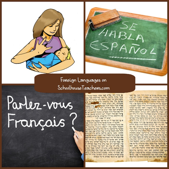 Foreign-Language4