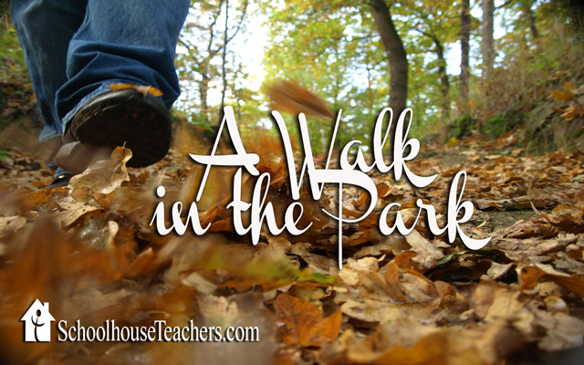 blog-walk-in-the-park