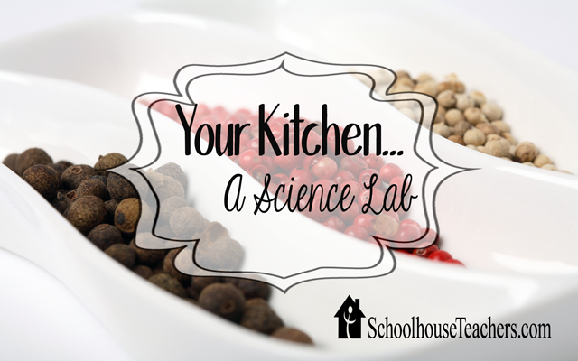 blog-your-kitchen