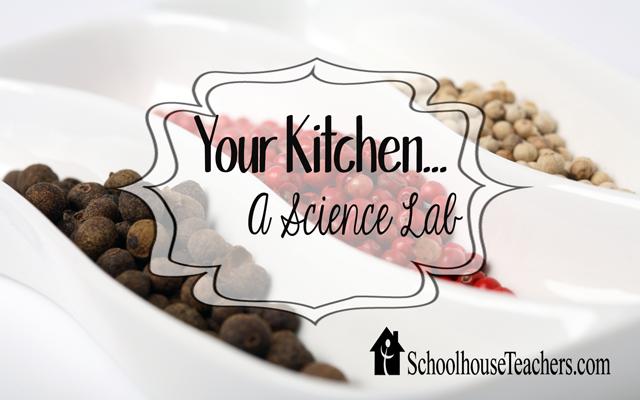 blog-your-kitchen
