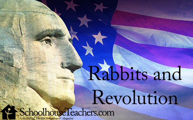 rabbitsandrevolution