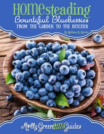 Molly Green Bite-Sized Guide: Bountiful Blueberries: From the Garden to the Kitchen