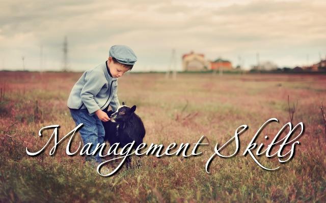 HwH - Management Skills