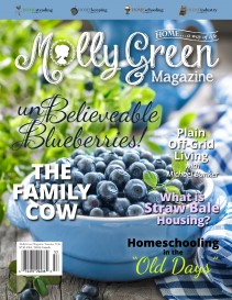 Molly Green Magazine: Summer on the Homestead 2016