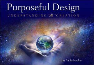 purposefuldesign