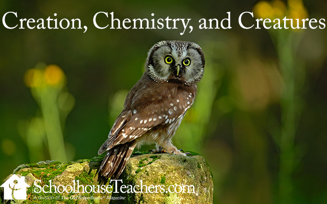 creationchemistrycreatures