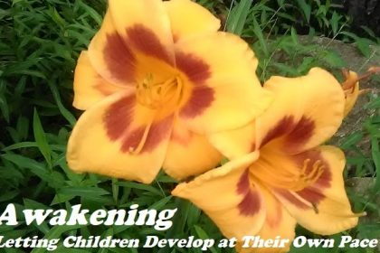 let children develop at their own pace