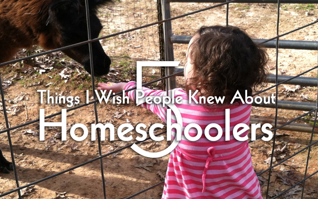 5 things i wish people knew about homeschoolers