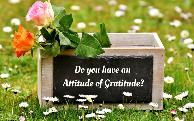 what is gratitude