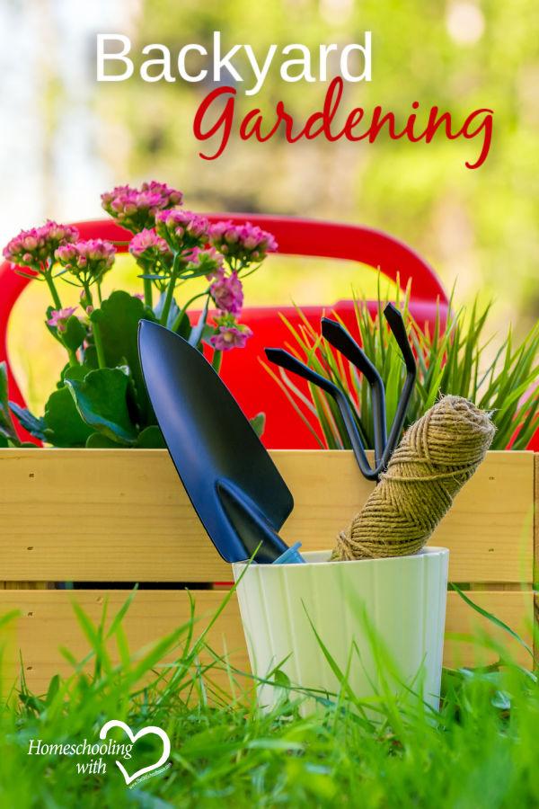 Gardening in the backyard