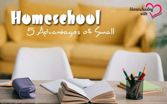 advantages of homeschool