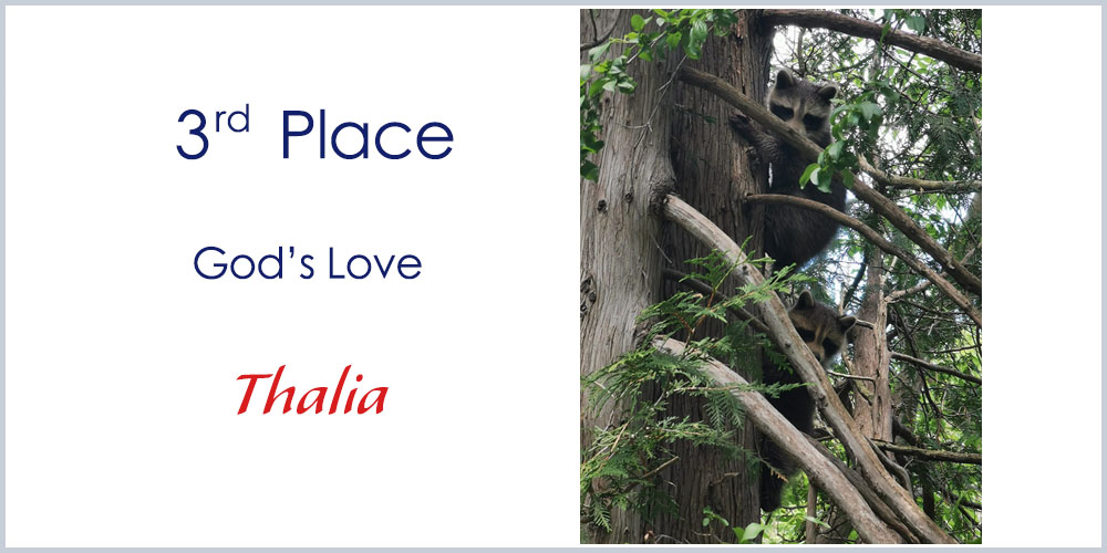 3rd Place winner 7-10 years old photography God's Love by Thalia