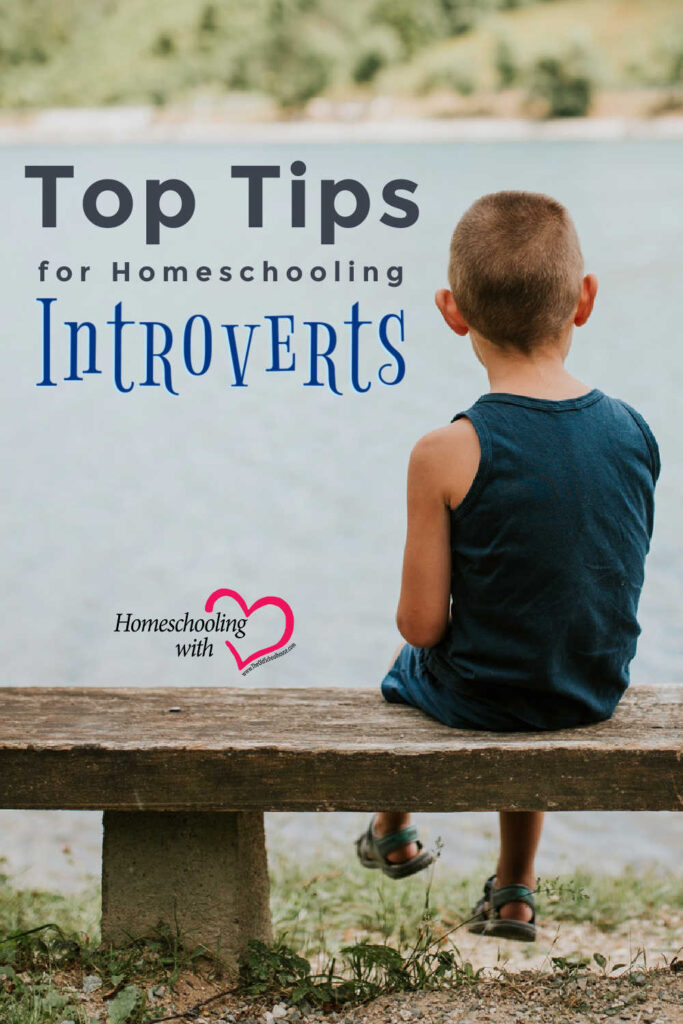Top Tips for Homeschooling Introverts