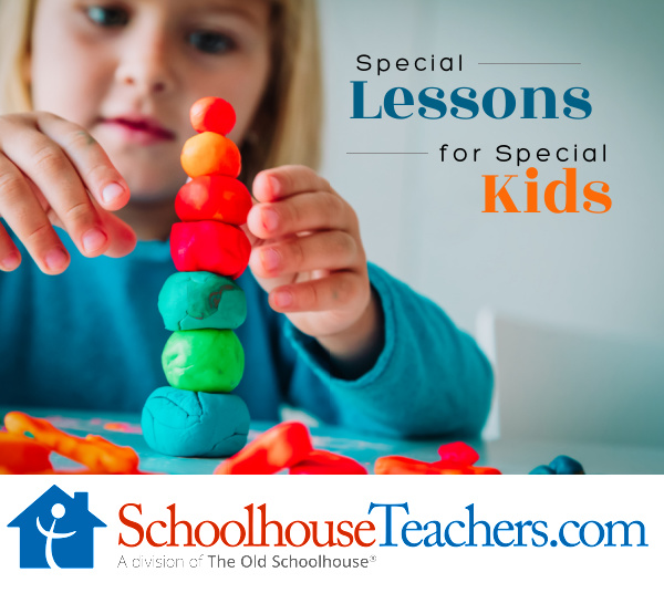 A child with special needs building with clay and the title Special Lessons for Special Kids